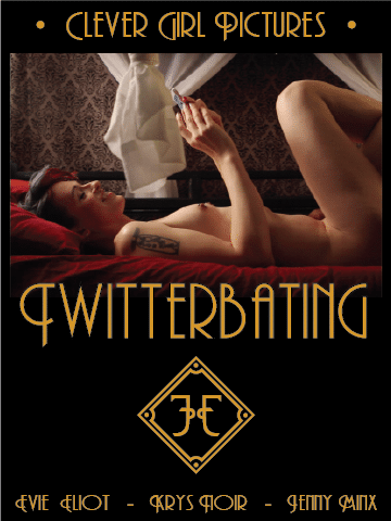 twitterbatng-box-art